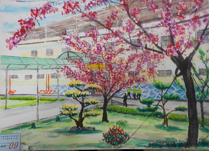 107年3月櫻花寫生比賽優勝作品4